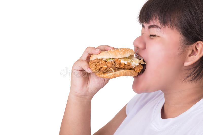 Fat asian woman eating fried chicken hamburger isolated on white. Background. food and healthcare concept royalty free stock images
