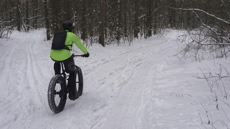 Fat bike also called fat bike or fat-tire bike - Cycling on large wheels in the winter forest. royalty free stock photos