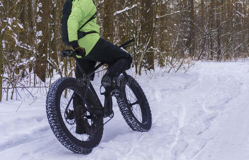 Fat bike also called fat bike or fat-tire bike - Cycling on large wheels in the winter forest. royalty free stock photo