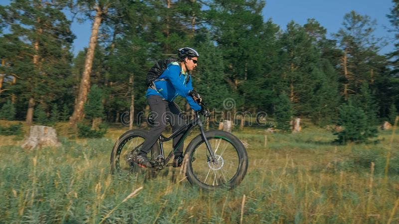 Fat bike also called fatbike or fat-tire bike in summer riding in the forest. The guy rides a bicycle among trees and stumps. He overcomes some obstacles on a stock photos