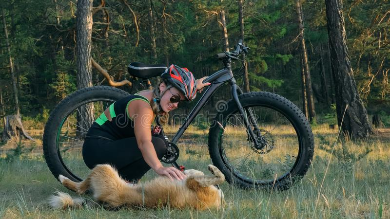 Fat bike also called fatbike or fat-tire bike in summer riding in the forest. Beautiful girl and her bicycle in the forest. She met the dog in the woods and royalty free stock photography