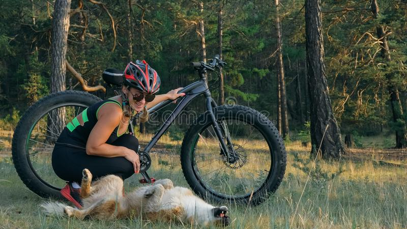 Fat bike also called fatbike or fat-tire bike in summer riding in the forest. Beautiful girl and her bicycle in the forest. She met the dog in the woods and royalty free stock images