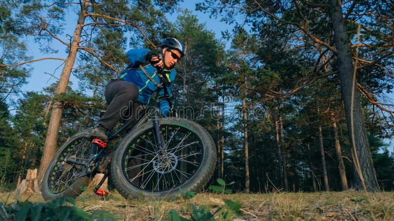 Fat bike also called fatbike or fat-tire bike in summer riding in the forest. The guy rides a bicycle on the forest soil. It goes into a controlled skid by the stock photography