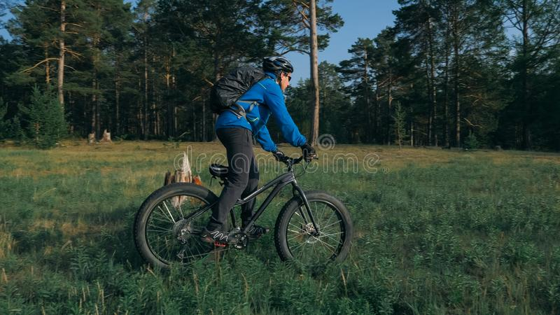 Fat bike also called fatbike or fat-tire bike in summer riding in the forest. The guy rides a bicycle among trees and stumps. He overcomes some obstacles on a royalty free stock photography