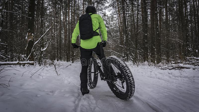 Fat bike also called fat bike or fat-tire bike - Cycling on large wheels in the winter forest. stock image