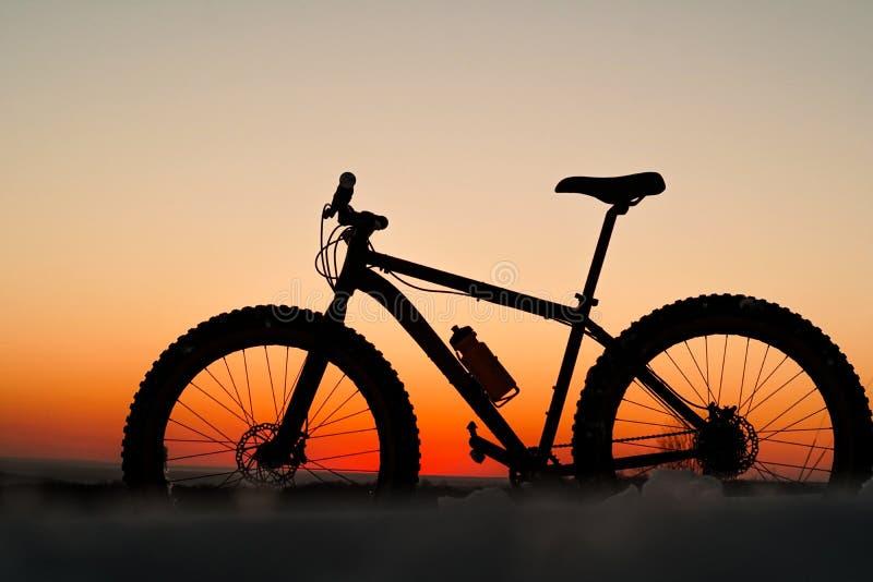 Fat bike sunset royalty free stock photos