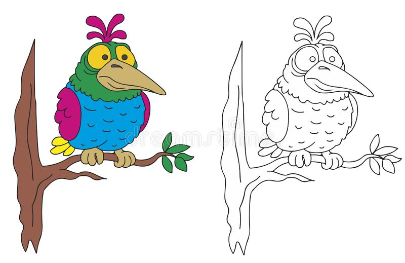 fat bird coloring pages childrens funny animals