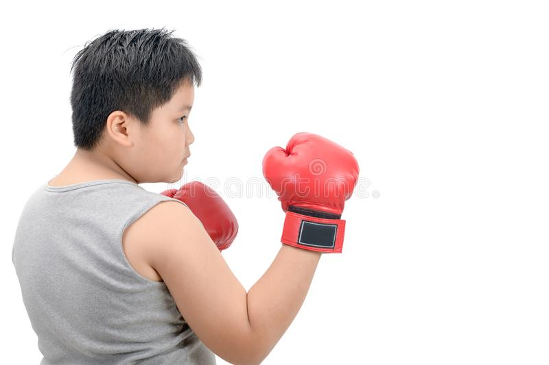 Fat boy kid fighting with red boxing gloves. Obese fat boy kid fighting with red boxing gloves isolated on white background, exercise and healthy concept stock images