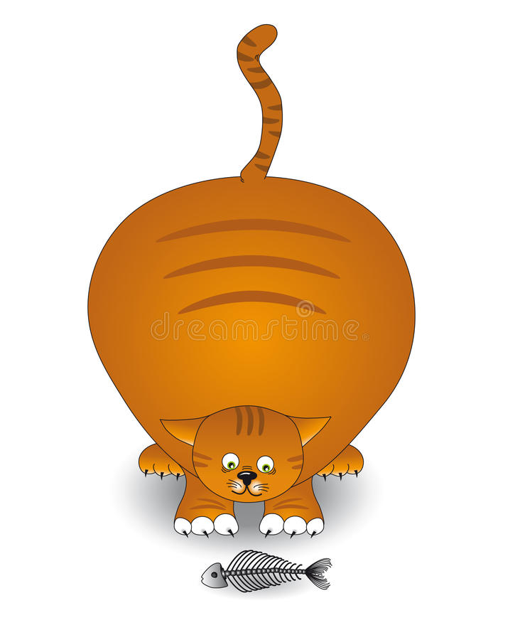 Download Fat cat stock vector. Image of kind, pets, ginger, pretty - 13242973