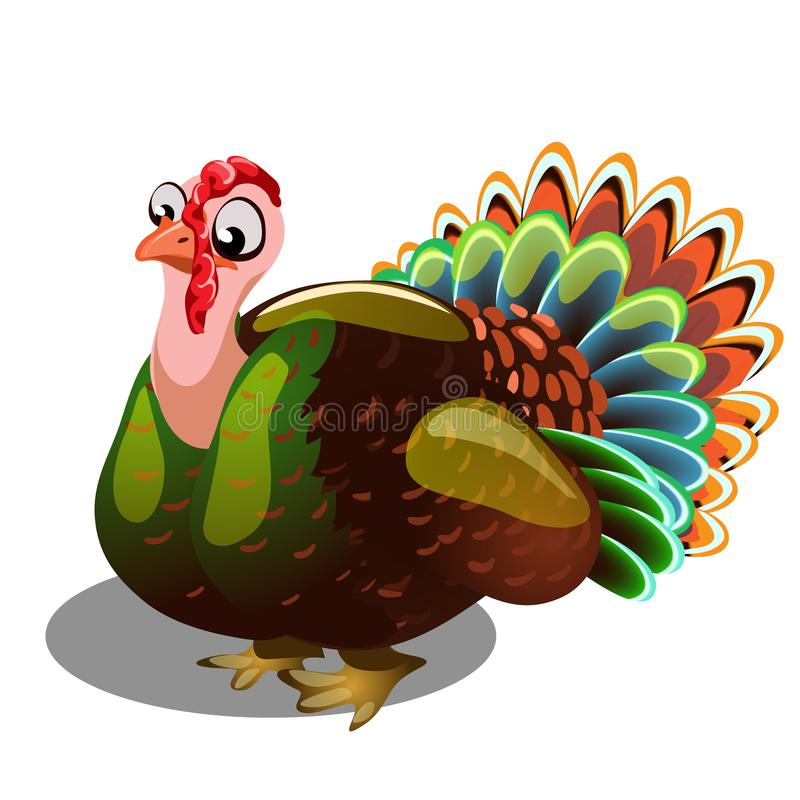 Fat gobbler isolated on white background. Vector cartoon close-up illustration. vector illustration
