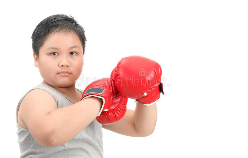 Fat kid fighting with red boxing gloves isolated. Obese fat boy kid fighting with red boxing gloves isolated on white background, exercise and healthy concept stock photography