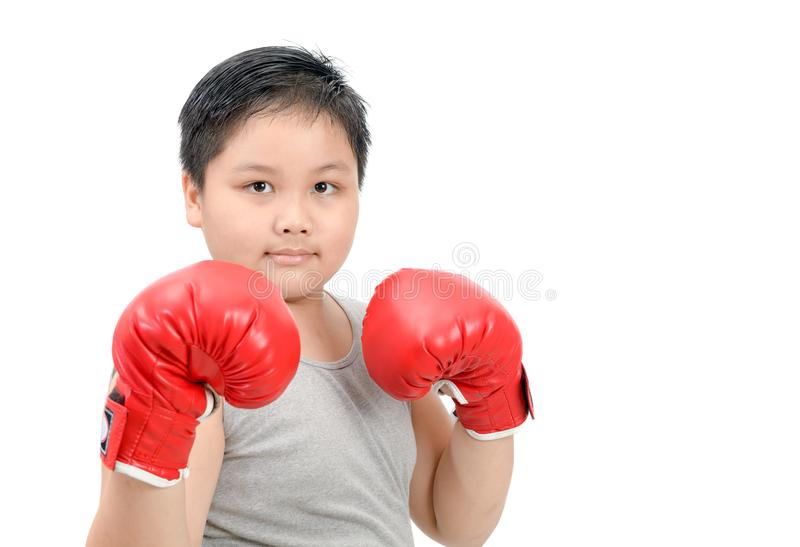 Fat kid fighting with red boxing gloves isolated. Obese fat boy kid fighting with red boxing gloves isolated on white background, exercise and healthy concept stock images
