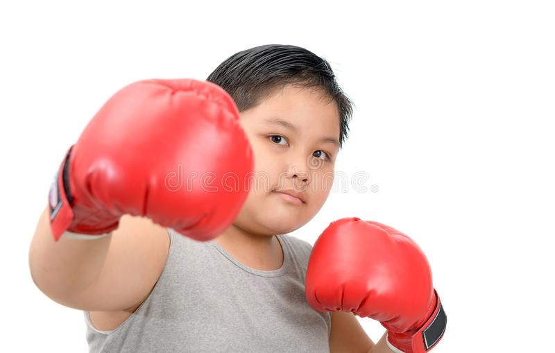 Fat kid fighting with red boxing gloves isolated. Obese fat boy kid fighting with red boxing gloves isolated on white background, exercise and healthy concept stock photo