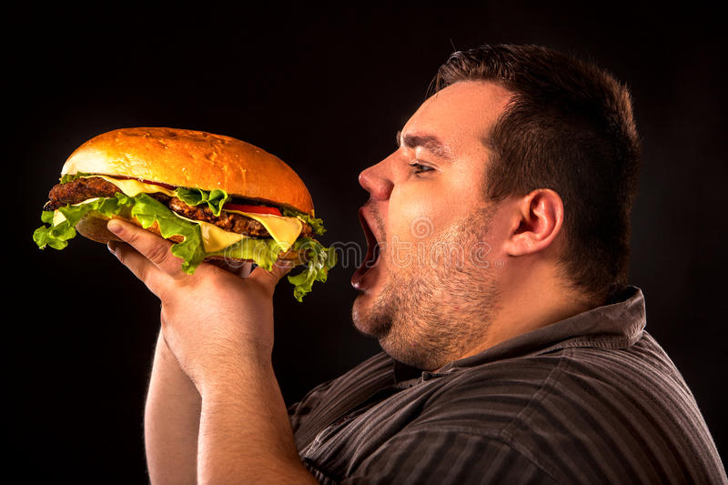 Fat man eating fast food hamberger. Breakfast for overweight person. stock photography