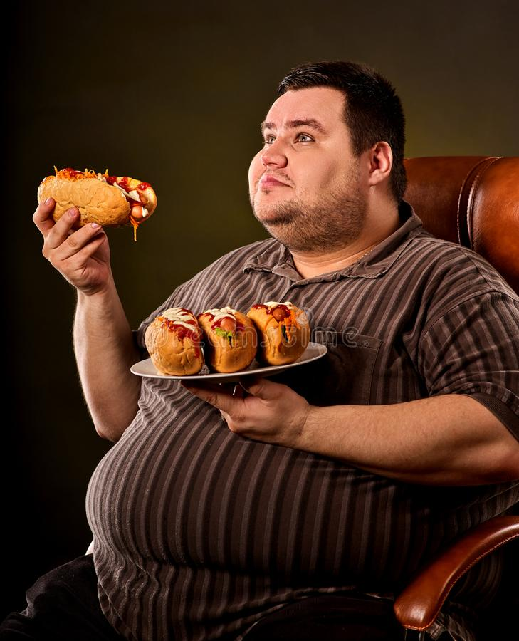 Fat man eating fast food hot dog. Breakfast for overweight person. Fat man eating fast food hot dog on plate. Breakfast for overweight person. Junk meal leads royalty free stock images