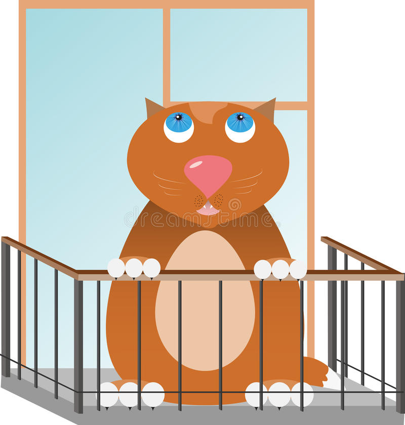 Fat red cat stock photo