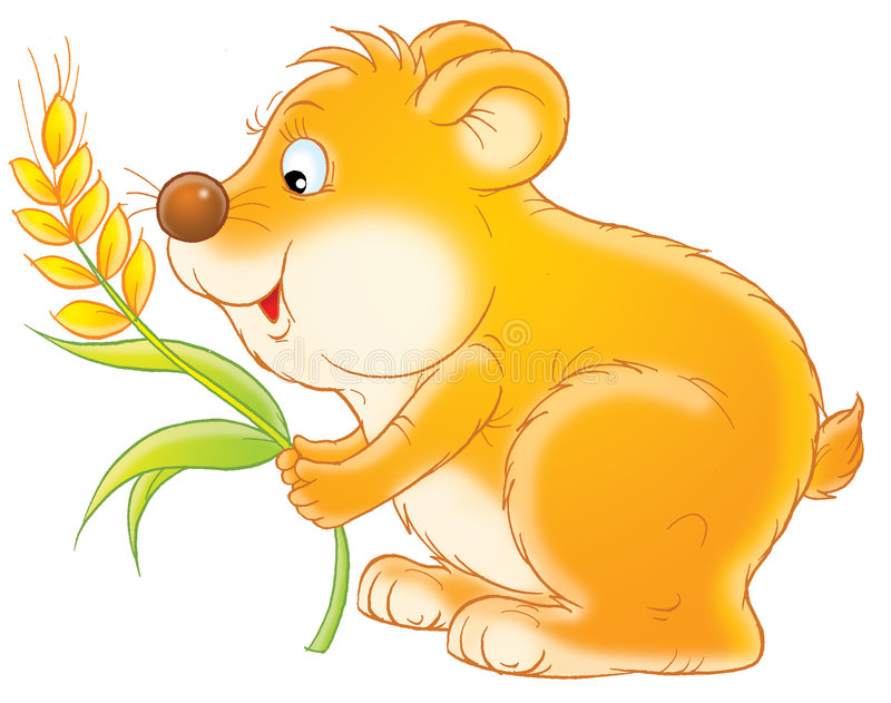Download Fat rodent stock illustration. Image of drawn, childish - 1562377