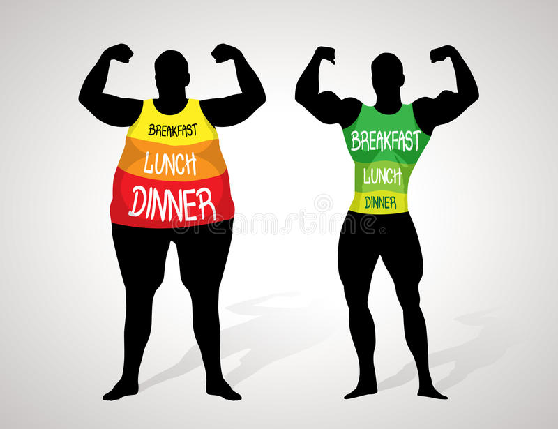 Fat and slim. Diet concept stock illustration