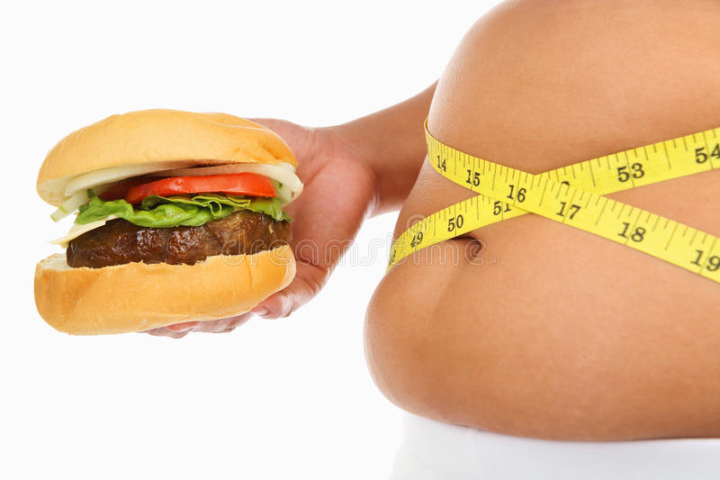 Download Fat stomach and burger stock image. Image of health, holding - 11226189