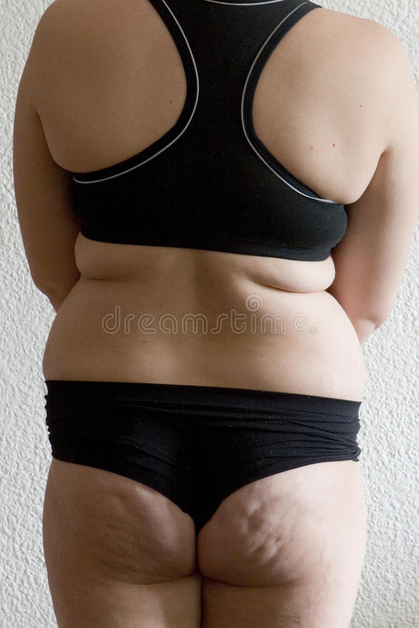 Download A fat woman stock photo. Image of lifestyle, isolated - 9905782