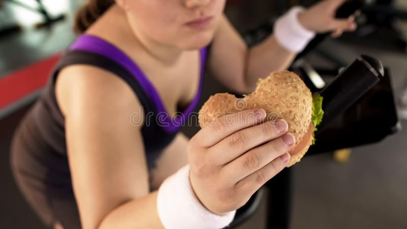 Fat woman riding stationary bike and eating fatty burger in gym, unhealthy diet royalty free stock image