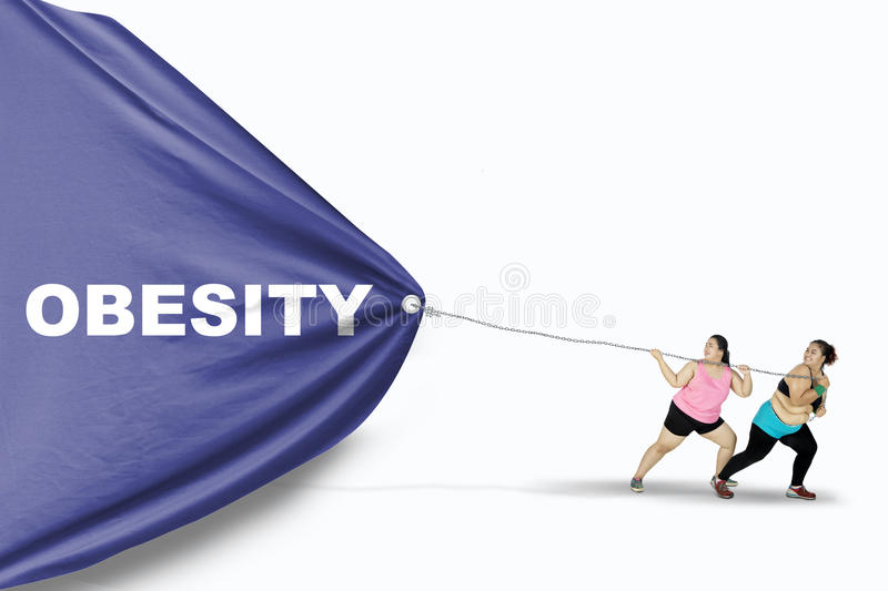 Fat women dragging Obesity text. Two fat young women dragging a big banner with Obesity text while wearing sportswear, isolated on white background stock photography