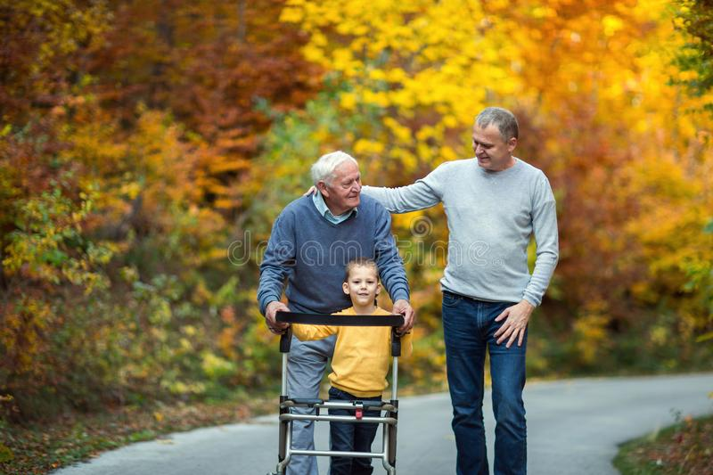Father adult son and grandson out for a walk in the park stock image