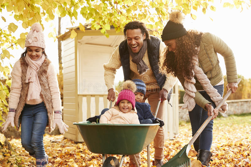 Father In Autumn Garden Gives Children Ride In Wheelbarrow royalty free stock image