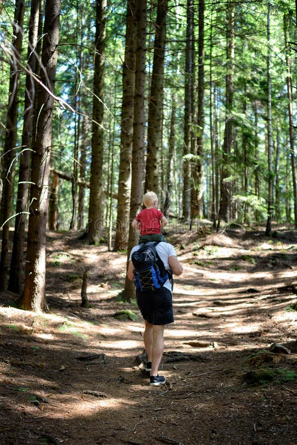 Father with backpack and young son on his shoulders walking on a coniferous forest. Back view. Activities and tourism royalty free stock photo