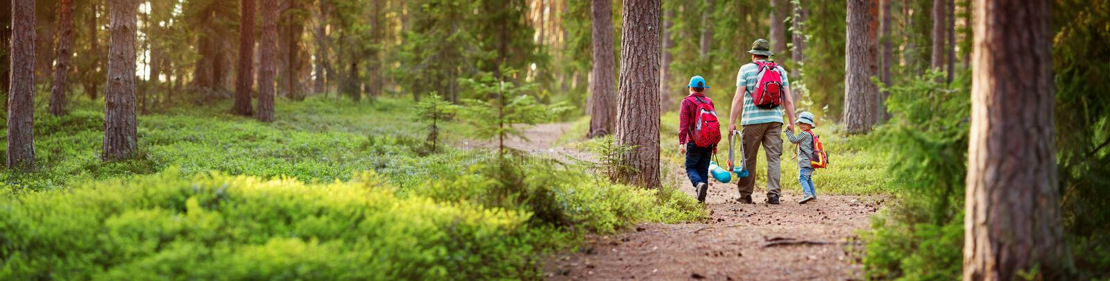 Father and boys going camping with tent in nature. Man with sons with backpacks walking in the forest stock photo