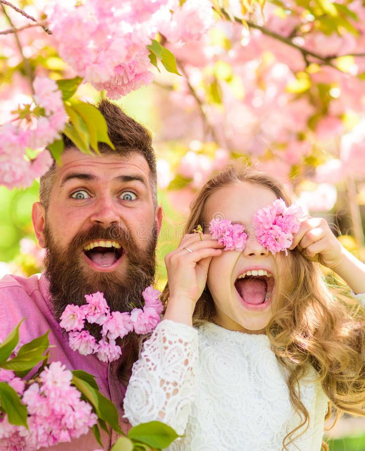 Father and daughter on happy face play with flowers as glasses, sakura background. Girl with dad near sakura flowers on. Spring day. Child and men with tender stock photo