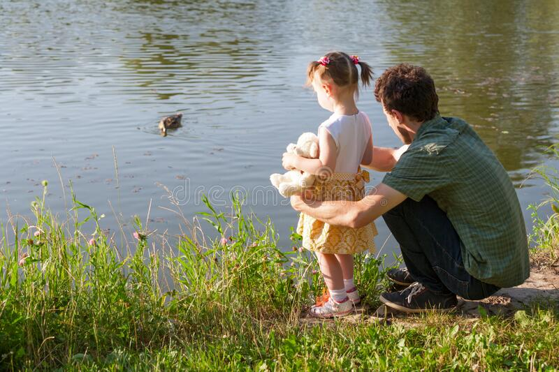 Father and daughter looking at lake. Girl is holding a Teddy bear. A wild duck swims through the water. Back view royalty free stock photo
