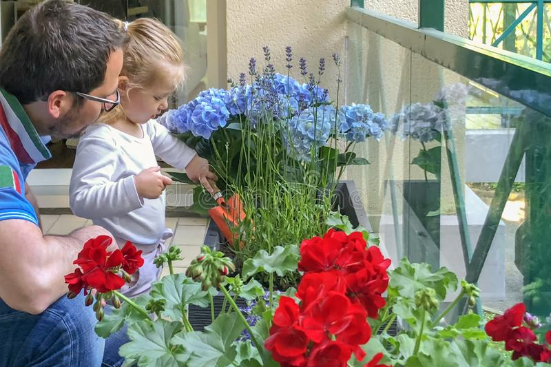 Father and daughter plant flowers on the balcony royalty free stock photos