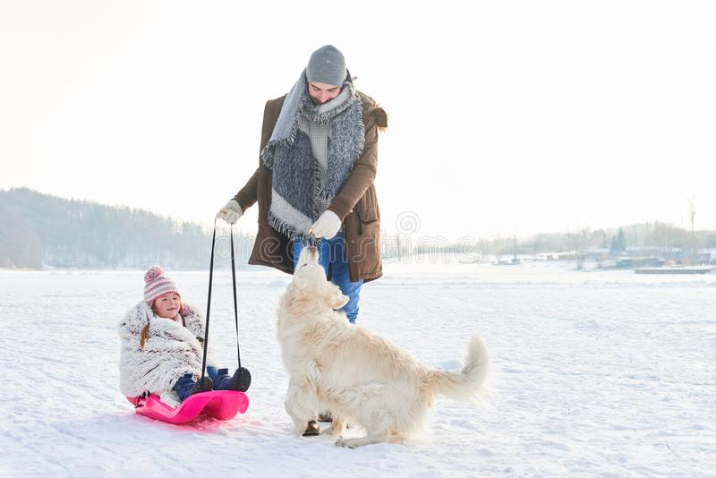 Father and daughter playing with dog in winter stock photography