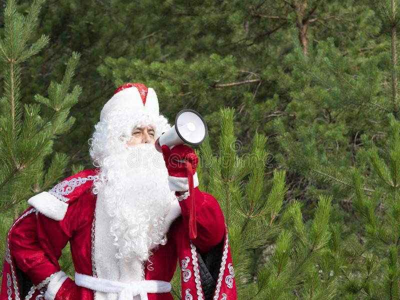 Father Frost shouts in the megaphone. The New Year`s character informs in a loud-hailer against the background of the nature stock image