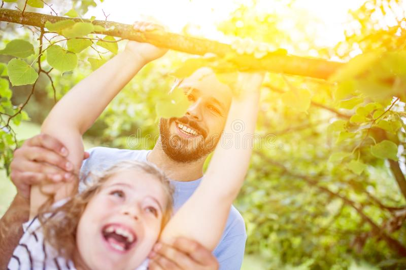 Father helps daughter climb tree stock photo