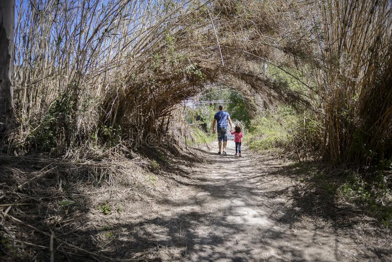 Father and little daughter walking on a path in a wetland stock image