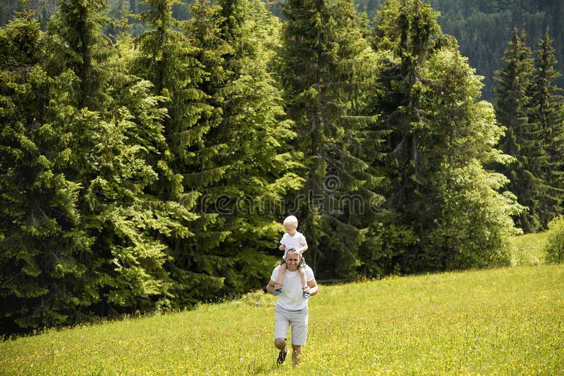 Father with little son on shoulders walking on a green meadow on a background of green pine forests stock image