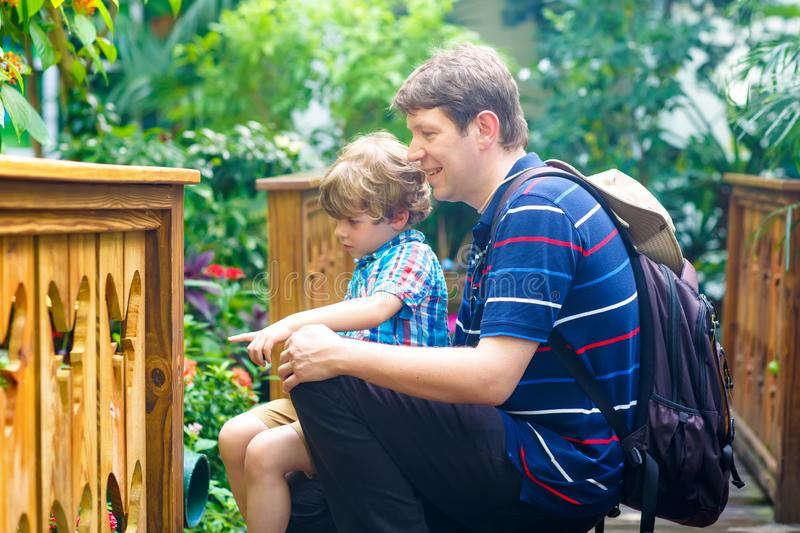 Father and preschool kid boy discovering flowers, plants and butterflies at botanic garden. Family, young man and son royalty free stock photo