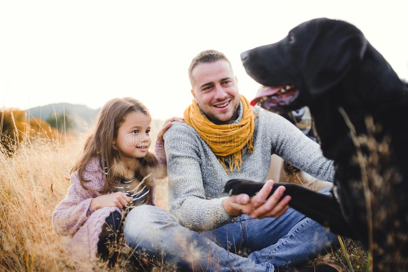 Father with small daughter and a dog sitting on grass in autumn nature. stock photos
