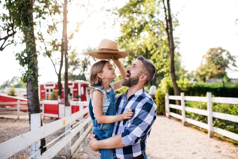 A father with small daughter standing outdoors on family farm, playing with hat. stock images