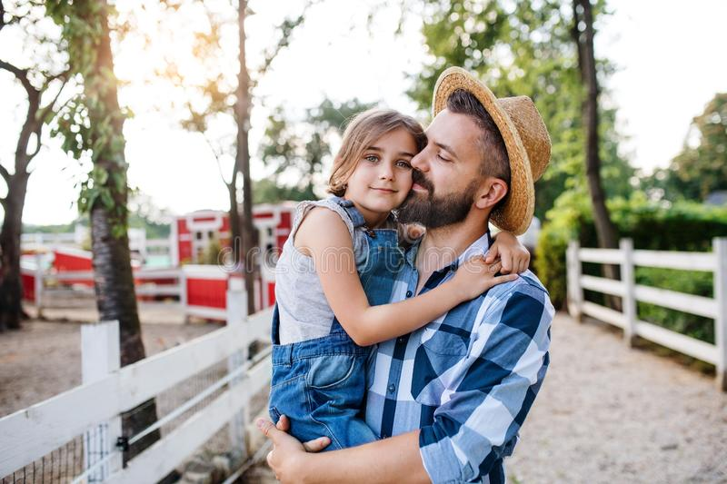 A father with small daughter walking outdoors on family farm. stock photo