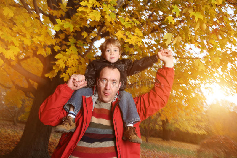 Download Father and son stock photo. Image of handsome, carefree - 15950078
