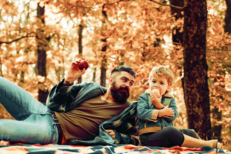 Father and son camping. Man with beard, dad with young son in autumn park. Happy joyful father with a cute son vacation stock photos