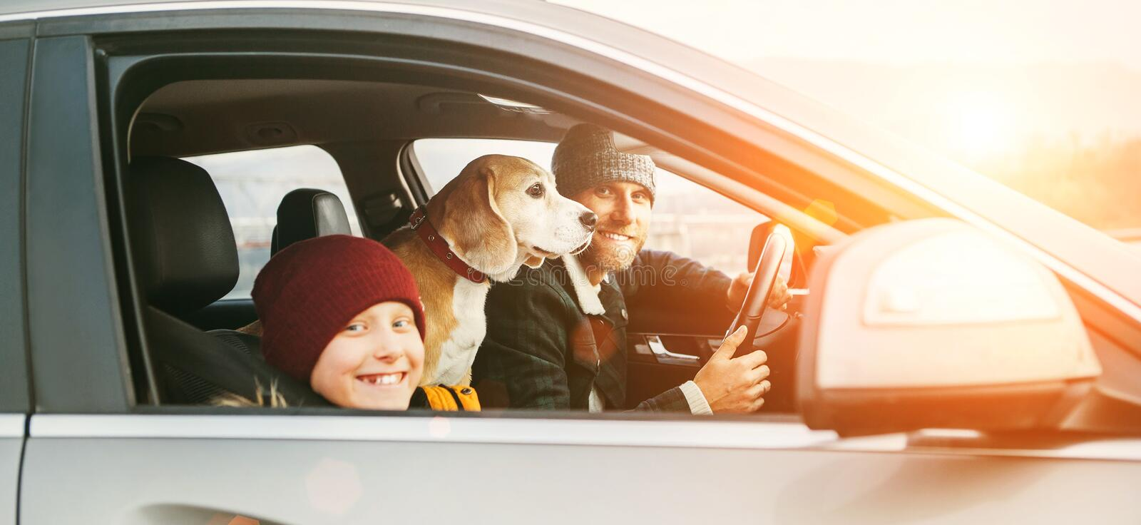 Father and son Family traveling by car with beagle dog. They are smiling to camera fixed with safety belts royalty free stock photography