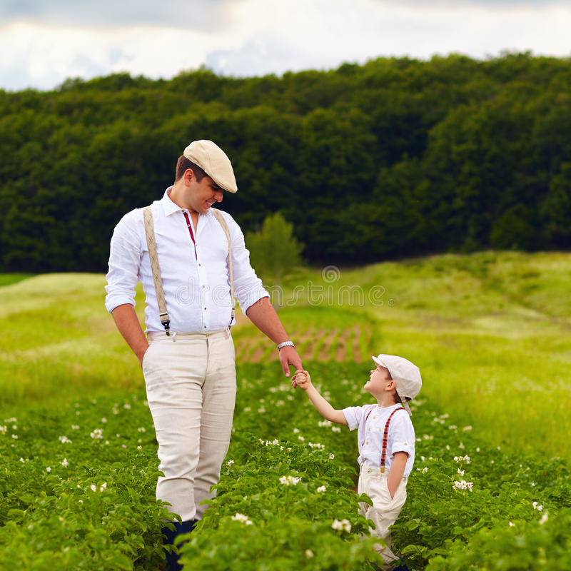 Father and son farmers walking along the potatoes rows among green fields royalty free stock photography