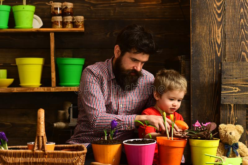 Father and son. Fathers day. Flower care. Soil fertilizers. Family day. Greenhouse. bearded man and little boy child royalty free stock photo