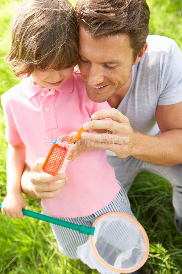 Download Father And Son In Field With Net And Bug Catcher Stock Images - Image: 26105664