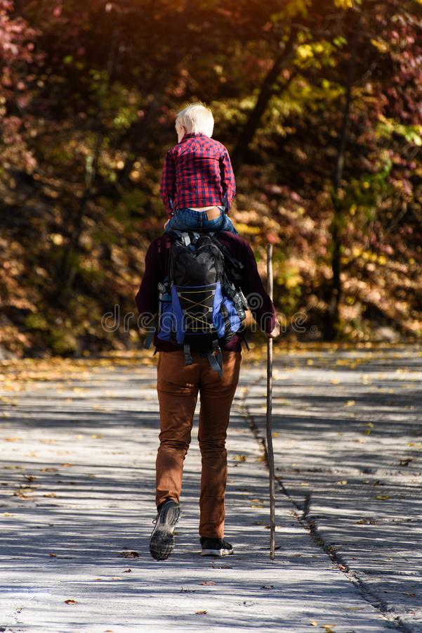 Father with son on his shoulders walking in the autumn park. Sunny day. Back view stock photo