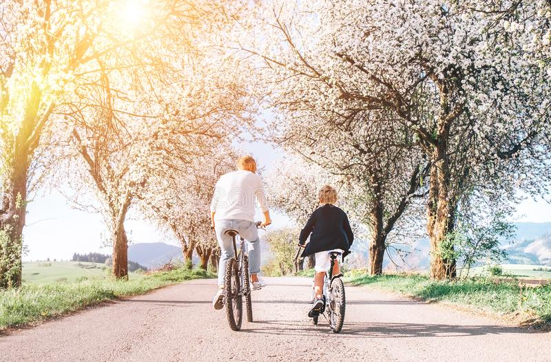 Father and son iding bicycles on country road under blossom trees. Healthy sporty lifestyle concept image stock photography